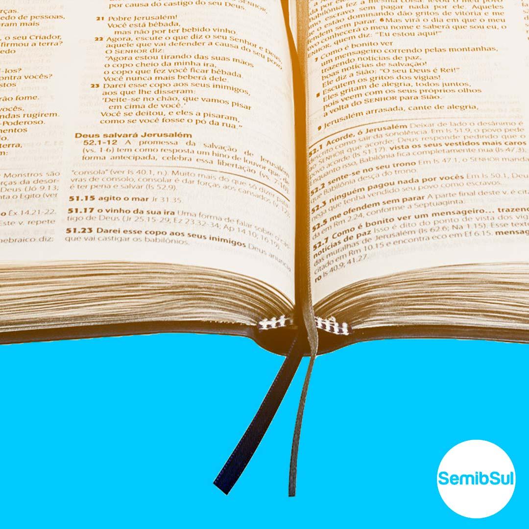 introdução a bíblia seminario ead semib